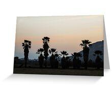 Palms At Dusk Greeting Card