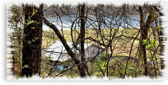 """""""A Sneak Peek of the Old Farm and the Tale Behind It""""... prints and products by © Bob Hall"""