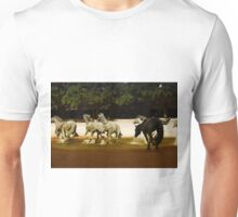 The Mustangs 2 Unisex T-Shirt