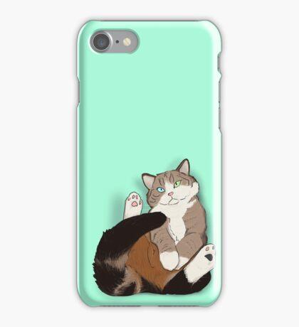 Cat in a Box III iPhone Case/Skin
