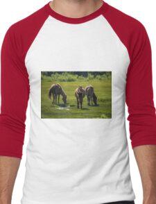 Assateague Adventure Tour Series - 4 T-Shirt