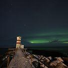 Iceland VIII by Debbie Ashe