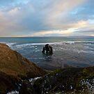 Iceland X by Debbie Ashe