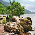 On the shores of Loch Ness by Anthony Hedger Photography