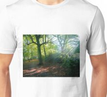The glory of an autumn morning T-Shirt