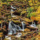 Smoky Mountain Stream  by GeneBerkenbile