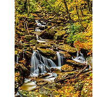 Smoky Mountain Stream  Photographic Print