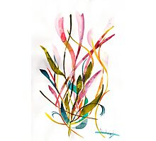 Unknown Flower 3 - Small Abstract Landscape, watercolor, ink & pencil on paper Photographic Print
