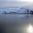 Iceland XIX by Debbie Ashe
