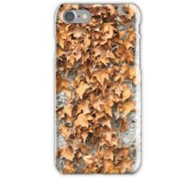 Dried Ivy Leaves iPhone Case/Skin