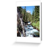 River Greeting Card
