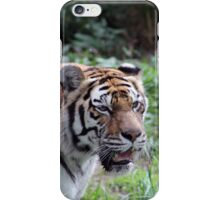 Are You Lunch iPhone Case/Skin