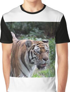 Are You Lunch Graphic T-Shirt