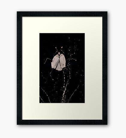 0077 - Brush and Ink - Splay Framed Print