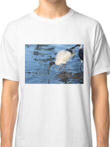 Ibis Classic T-Shirt