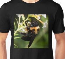 I am SOOOO Drunk on Honey Meade!  Unisex T-Shirt