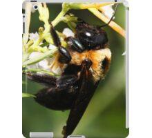 I am SOOOO Drunk on Honey Meade!  iPad Case/Skin