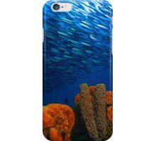 sea sponge and fish iPhone Case/Skin