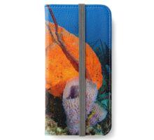 Demospongiae Agelas clathrodes iPhone Wallet/Case/Skin