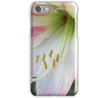 Beauty Blossoms iPhone Case/Skin