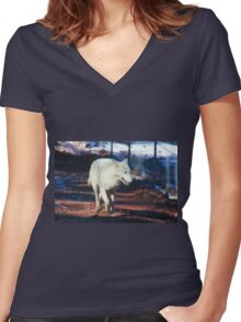 """""""White Tundra Wolf"""" Women's Fitted V-Neck T-Shirt"""