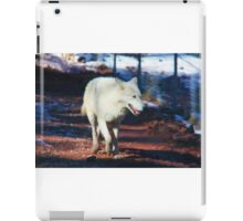 """White Tundra Wolf"" iPad Case/Skin"