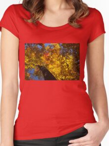 Hot Autumn Palette Women's Fitted Scoop T-Shirt