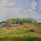 Burleigh Heads,  Headland . Gold Coast  by Virginia McGowan