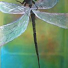 Dragonfly by Margo Humphries