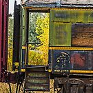 All Aboard! by Sue Smith