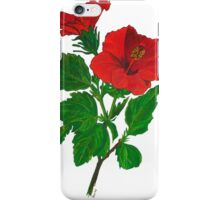 A Red Hibiscus Flower Isolated On White Background iPhone Case/Skin