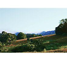 San Rafael Hills Photographic Print