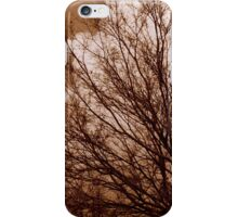 Mysterious Wilderness iPhone Case/Skin