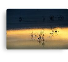 Israel, Dead Sea at dawn  Canvas Print