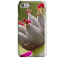 dried peony in the gardendried peony in the garden iPhone Case/Skin