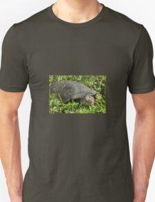 Soft Back Turtle  Unisex T-Shirt