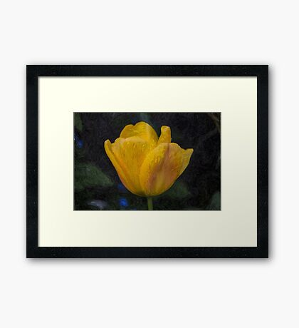 Yellow Tulip Oil Painting Effect Framed Print