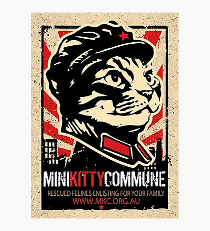 """MKC """"Big Fat Charity Cat Picture"""" Photographic Print"""