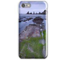 The proud peaks iPhone Case/Skin