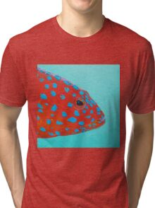 Strawberry Grouper Fish on turquoise Tri-blend T-Shirt