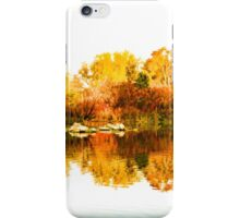 Impressions of Forests - Colorful Autumn Mirror iPhone Case/Skin