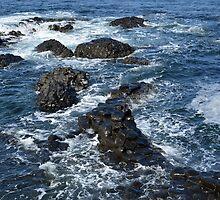 Giant's Causeway - Northern Ireland by Arie Koene