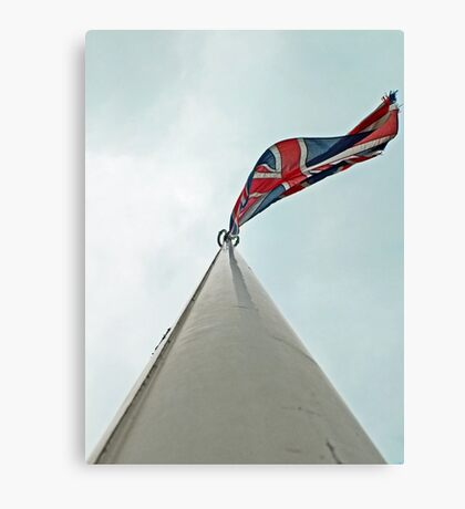 Run it up the flagpole, see if anybody salutes. Canvas Print