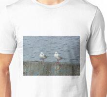 Pair of Gulls, Hobart Unisex T-Shirt