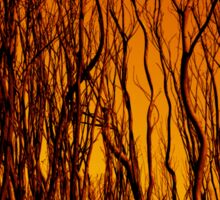 Scorched Branches Sticker