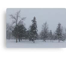 A Cold December Morning - Snowstorm in the Park Canvas Print