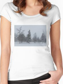 A Cold December Morning - Snowstorm in the Park Women's Fitted Scoop T-Shirt