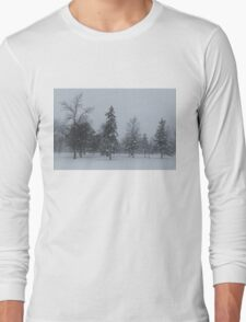 A Cold December Morning - Snowstorm in the Park Long Sleeve T-Shirt