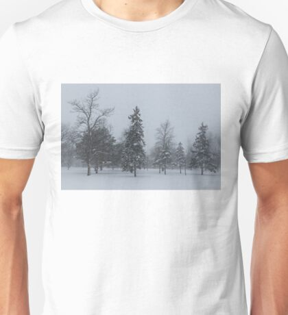 A Cold December Morning - Snowstorm in the Park Unisex T-Shirt