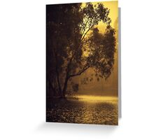 Golden Morning By Lorraine McCarthy Greeting Card